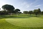 Golf Clubs in Washington DC - Things to Do In Washington DC